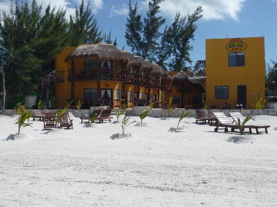 Holbox Dream Beach Front Hotel by Xperience Hotels: Vue de l'hôtel depuis la plage