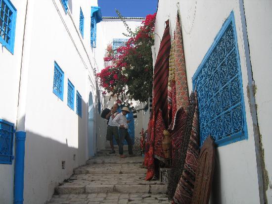 قطفت لكم باقة من أجمل زهور الوطن العربي sidi-bou-said.jpg