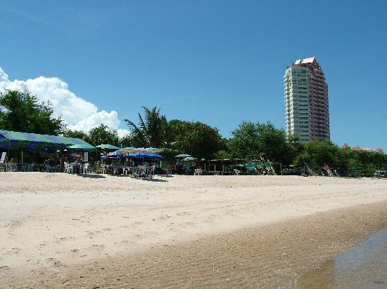 Springfield Beach Resort : View of hotel from the beach