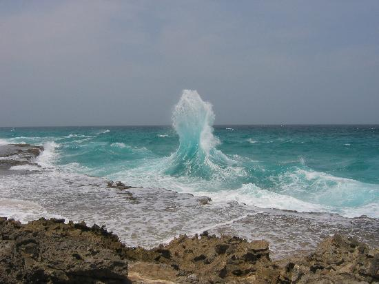 Windward side of the island picture of aruba caribbean for The windward