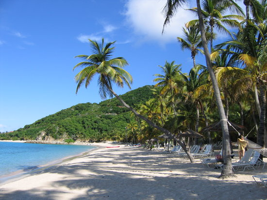 Peter Island Resort and Spa: Deadman's Beach Crooked Palm