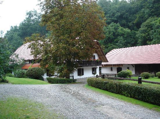 Otocec, Slovenia: Driveway at Seruga