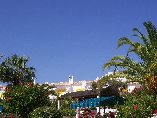 Luz Ocean Club: View from pool