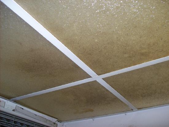 Golden Sands Inn: Ceiling mold