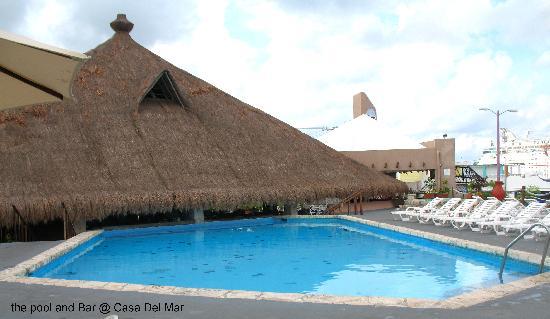 Casa del Mar Cozumel Hotel & Dive Resort: Pool and restaraunt roof