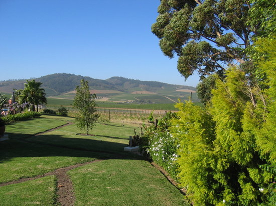 Allegria Guesthouse: Views