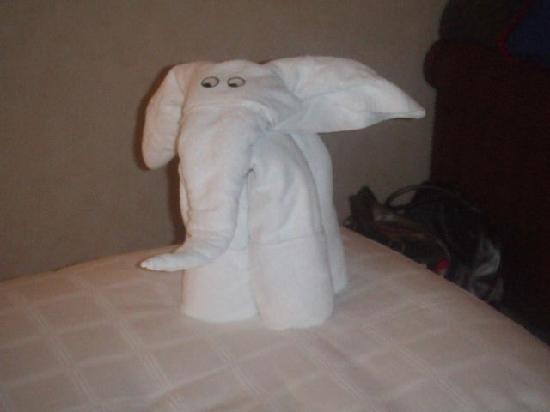 Jumeirah Mina A'Salam : Towel Pets every night