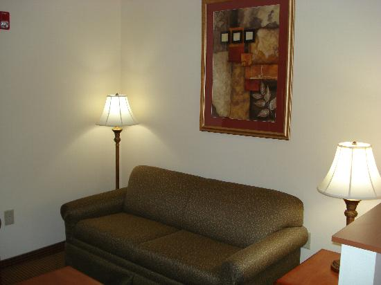 Comfort Suites Wytheville : Living area