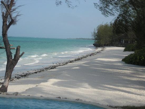 Pongwe Beach Hotel: Beach