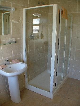 Harbour View Bed & Breakfast: bathroom with power shower