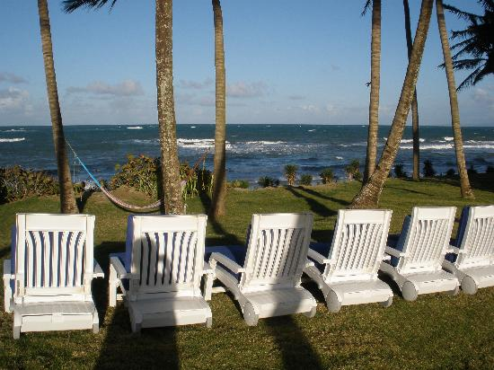 Cabarete East Beachfront Resort: Enjoy sitting by the ocean with the resort at your back.