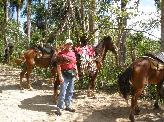 Cabarete East Beachfront Resort: Contact Iguana Mama for great options in outdoor adventure.