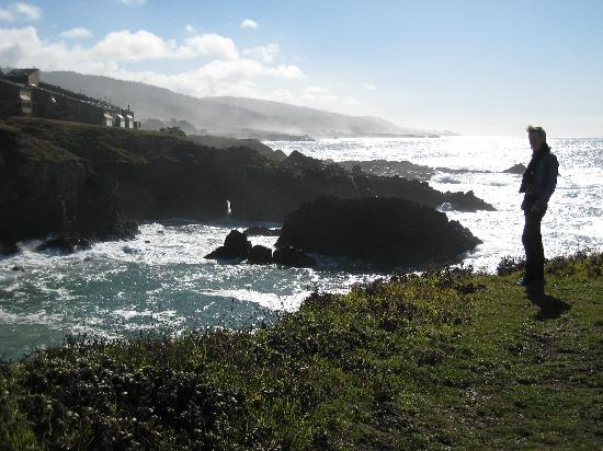Sea Ranch Lodge: Me on the cliffs behind the hotel