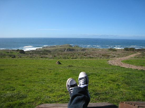 Sea Ranch Lodge: View from the hotel's adirondack chairs