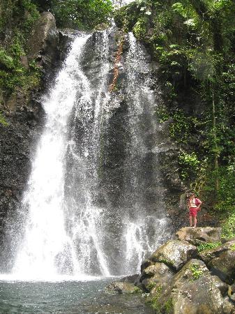 Bouma Falls Middle Fall Picture Of Taveuni Island Fiji