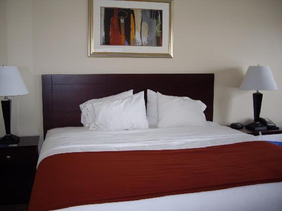 Holiday Inn Express Minot South: king bed