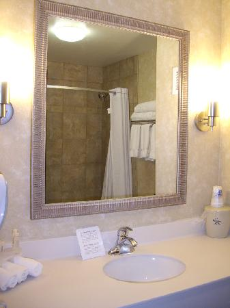 Holiday Inn Express Minot South: bathroom