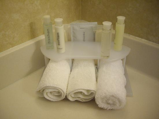 Holiday Inn Express Minot South: extras in the bathroom for your use