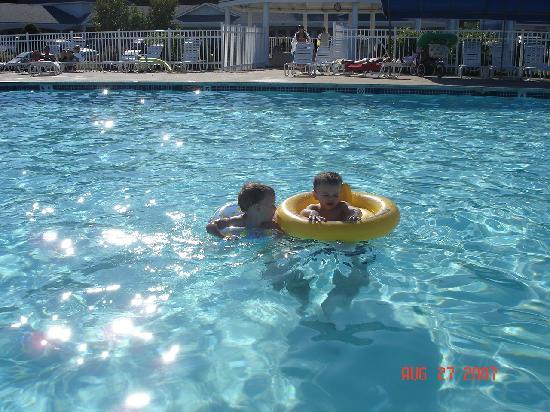 Ogunquit Resort Motel: Sparkling Pool