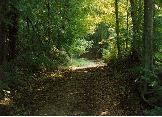 Natchez Trace Parkway: Section of the old trace for walking - Tennessee.