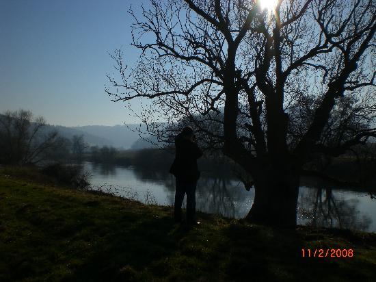 Flanesford Priory : Nearby river walk (February)