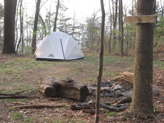 ساوث كارولينا: Nice campsite near