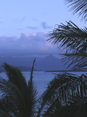 Aloha Paradise Inn: predawn from the lanai
