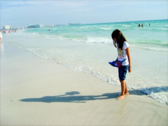 Siesta Key Beach White Powdery