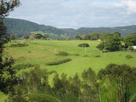Kiama Bed & Breakfast: view of the valley and hills from the deck
