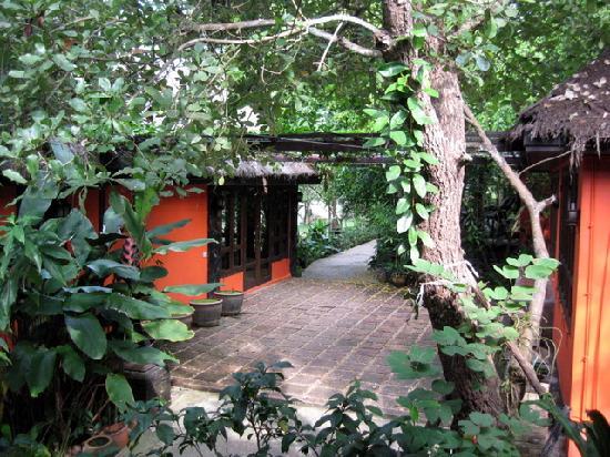 Baan Nam Ping Riverside Village: garden