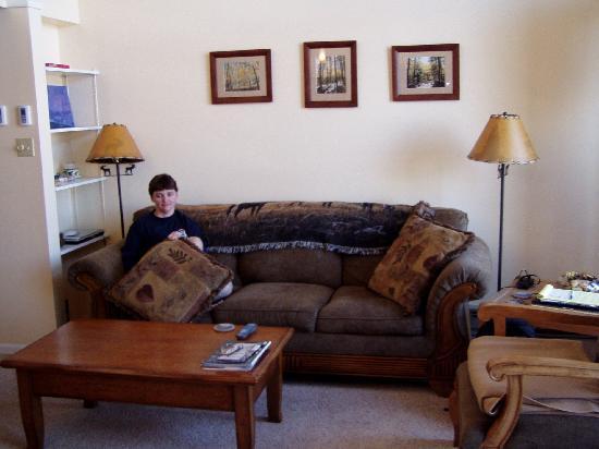 The West Condominiums: Living Room