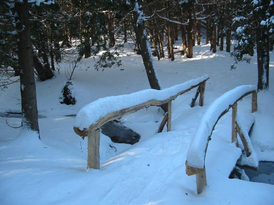 Ste. Anne's Spa: Part of the snow shoeing trail