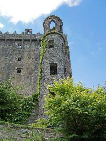 Irland: Blarney Castle