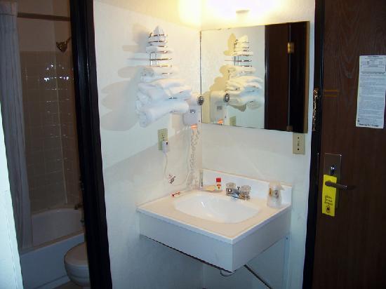 Ramada Minneapolis Golden Valley: bathroom, vanity area, doorway
