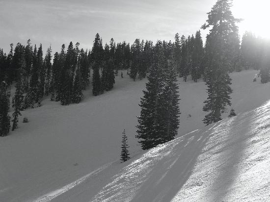 Homewood Mountain Resort: Late in the Day at Homewood