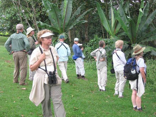Kakamega Forest: Birding Kakamega