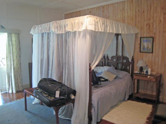 Kakamega Forest: Our room