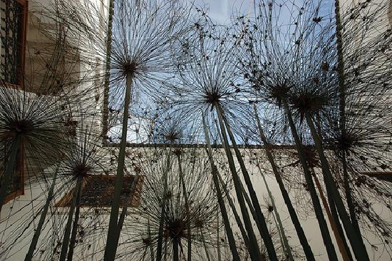 Riad Miski: A l'ombre des papyrus, dans le patio.