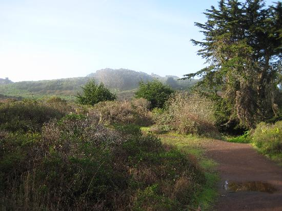 HI Marin Headlands Hostel: Hiking Trail from Hostel to Beach