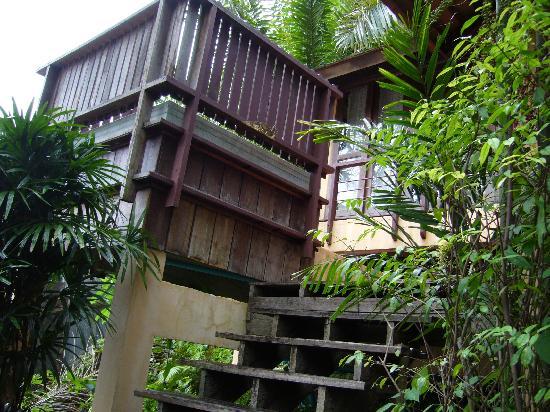 熱帶草本溫泉度假村張圖片