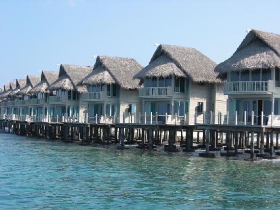 J Resorts Alidhoo: Ocean Villas