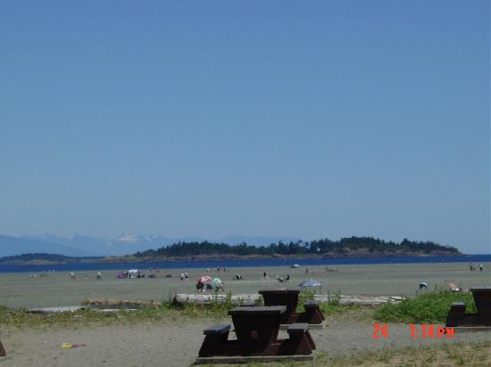 Rathtrevor Beach Provincial Park: Rathtrevor Beach & Picnic Area (mid-low tide)
