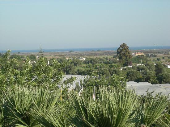 Tavira Garden: View from the balcony