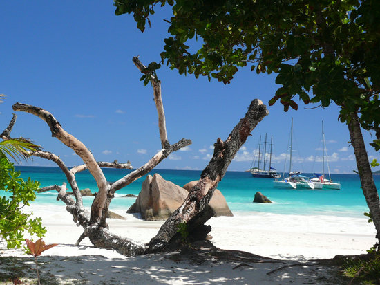 Ilha de Praslin, Ilhas Seychelles: Anse Lazio à Praslin