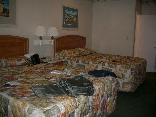 A luxurious bed each