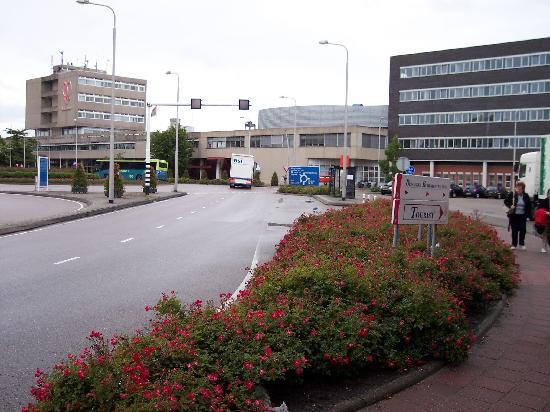 Royal FloraHolland: Aalsmeer Flower Auction
