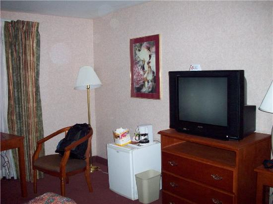 Hills Garden Hotel San Bernardino: TV and frig