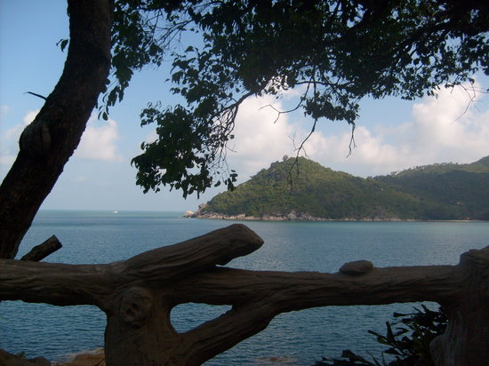 Panviman Resort - Koh Pha Ngan : view from pool