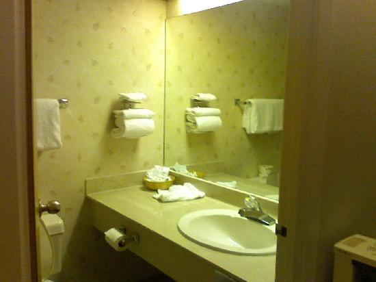 Days Inn - Saskatoon: room