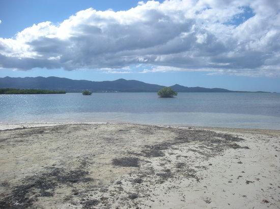 Guadalupe: Basse-Terre et Ste Rose depuis La Biche